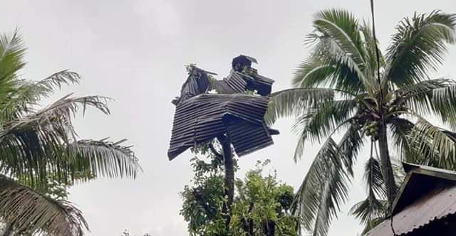 ভয়াবহ ঘুর্নিঝড়ে লন্ডভন্ড নাসিরনগর