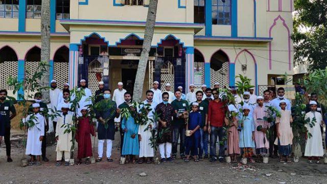 গ্রীন নবীনগর সামাজিক সংগঠনের উদ্যোগে বৃক্ষরোপণ কর্মসূচি পালিত