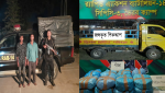 ব্রাহ্মণবাড়িয়ায় র্যাবের অভিযানে গাঁজা ও পিক-আপ সহ ২ মাদক ব্যবসায়ী গ্রেফতার